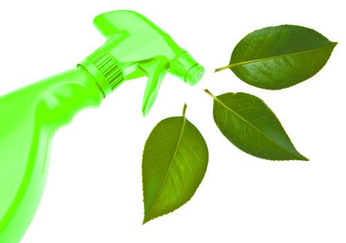 Faxina ecologica