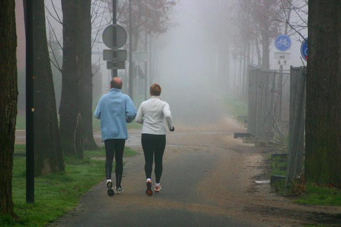 Running in the morning 1538848