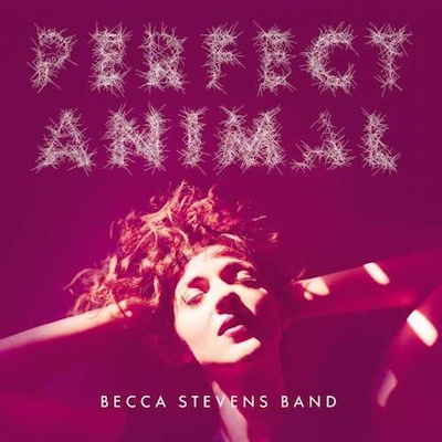 Becca Stevens - Perfect Animal