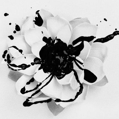 Eyes Set To Kill - White Lotus