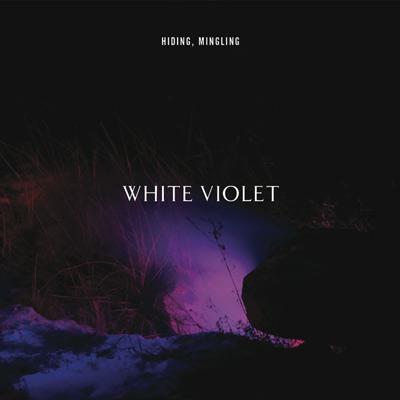 White Violet - Hiding, Mingling