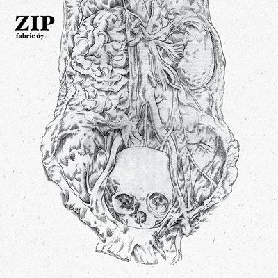 Zip - Fabric 67: Zip
