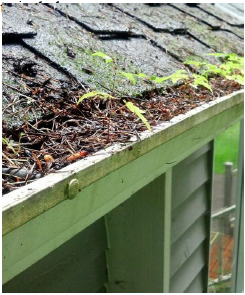 open gutter damage