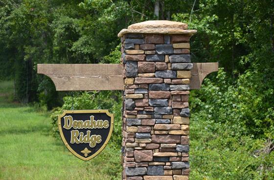 Donahue Ridge