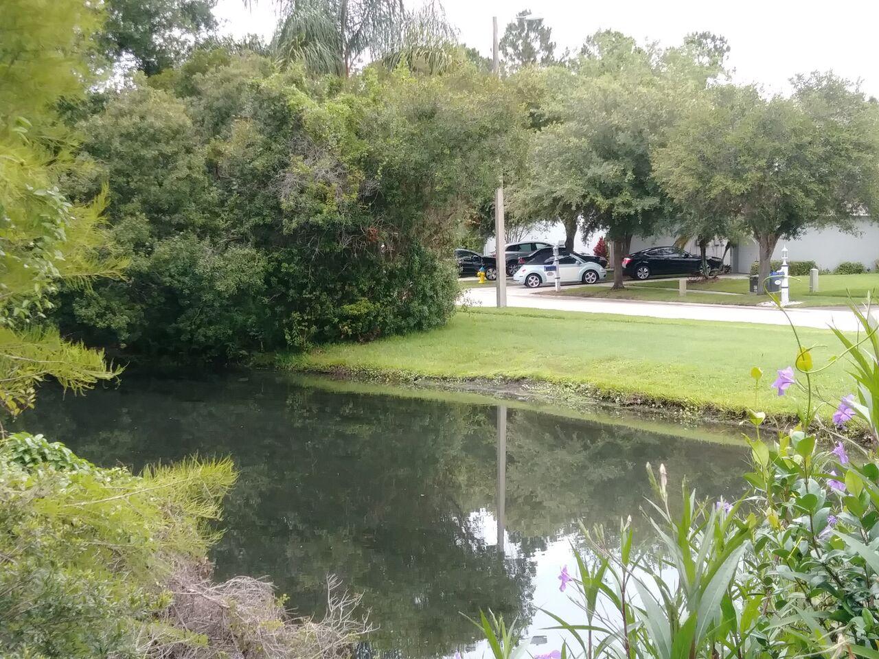 Photo of 4206 Fishermans Lake Dr, Lutz, FL, 33558