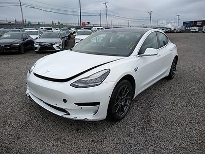 2019 Tesla Model 3 (Electric Motor; Single Motor-3 Phase