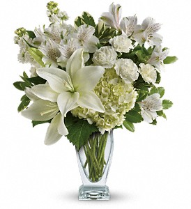 This snow-white bouquet includes hydrangea, asiatic lilies, alstroemeria, miniature carnations, stock and fresh green pittosporum. Delivered in a Couture vase.