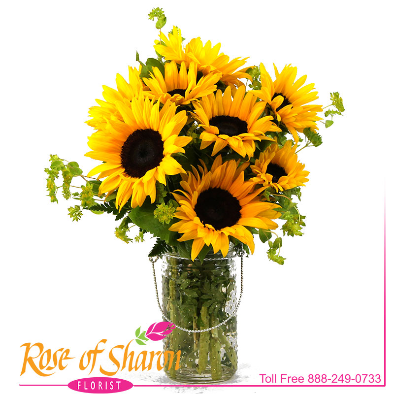 Happy Sunflowers are here for Spring. 8 beautiful Sunflowers arranged in a hobnail glass jar with bail.