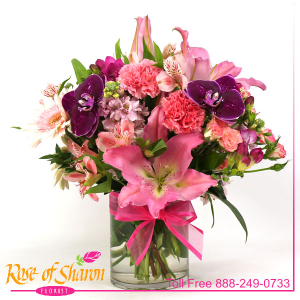 Exquisite Spring is an arrangement of Phaleonopsis Orchid, Oriental Lily, fragrant stock and freesia, Dianthus, Gerbera, alstromeria and miniature rose buds in a glass cylinder.