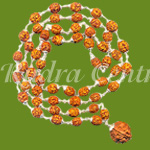 Rare-4-mukhi-Brahma-mala---Tiny-beads-