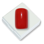 Red-Italian-Coral---17.5-Carats-
