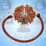 Collector-Ten-Mukhi---XLII