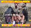 LONG TERM LOST LOVE SPELLS CASTER CALL +27835805415 DRDENE