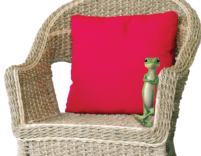 GEICO: Homeowners Insurance & More