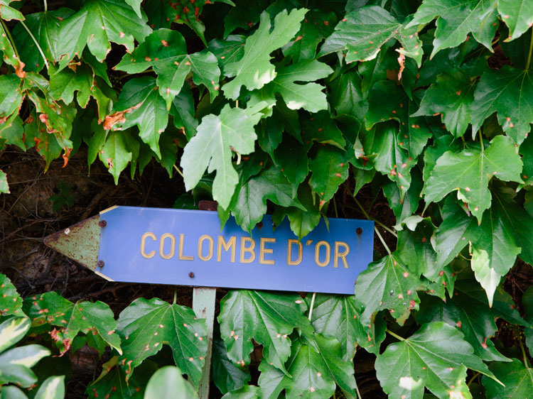 The way to La Colombe D'or, in St-Paul de Vence.