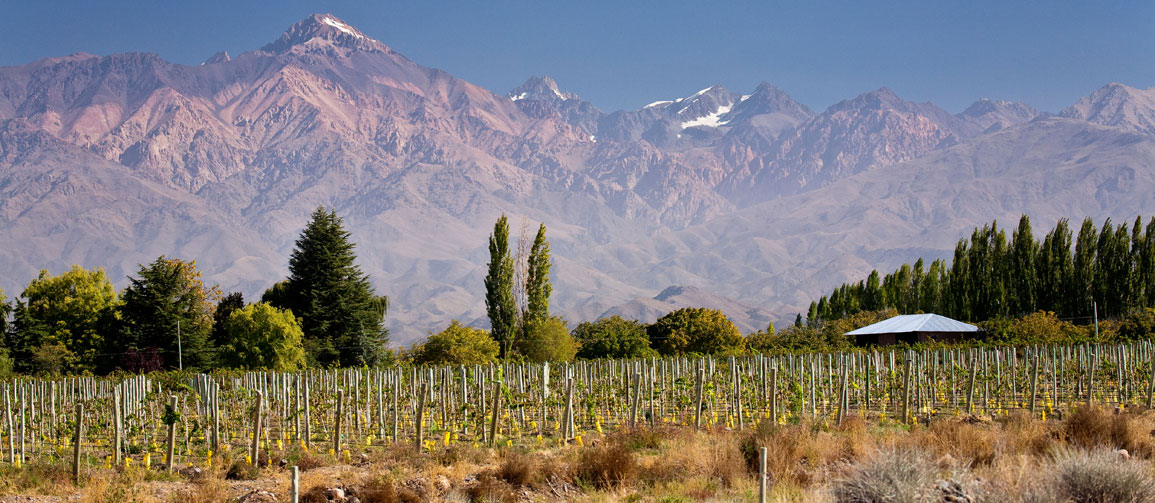 Buenos Aires and Mendoza: The Editor's Itinerary