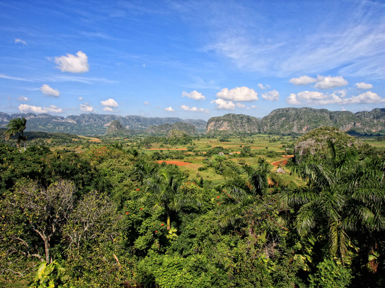 The Viñales Valley.