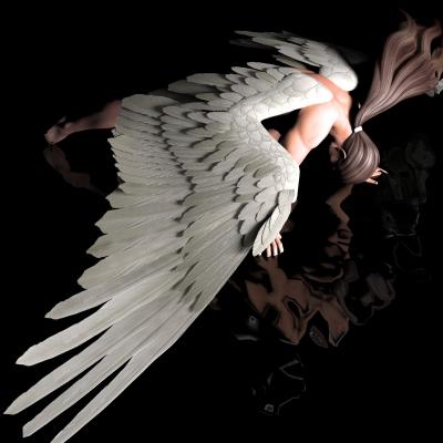 לחיות למרות הפיברומיאלגיה (התמונה מהאתר www.freedigitalphotos.net)