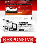 Software Red Mobile and Desktop Responsive Skin & MGS Module & Typography  Portal Templates