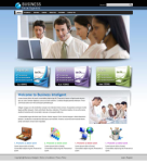 Business Intelligence 598098-5