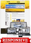 Award Gold  // 960 Grid // Mobile and Desktop Responsive //Portal Templates // Social 
