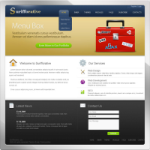 Surifforative web 2.0 DNN Skin version 01.00.01