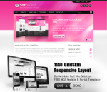 Software HotPink Mobile and Desktop Responsive Skin & MGS Module & Typography  Portal Templates