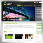 Quatri web 2.0 DNN Skin version 01.00.06