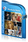Responsive Grid Gallery V02.05 - Photo and Video Gallery - ModuleDNN