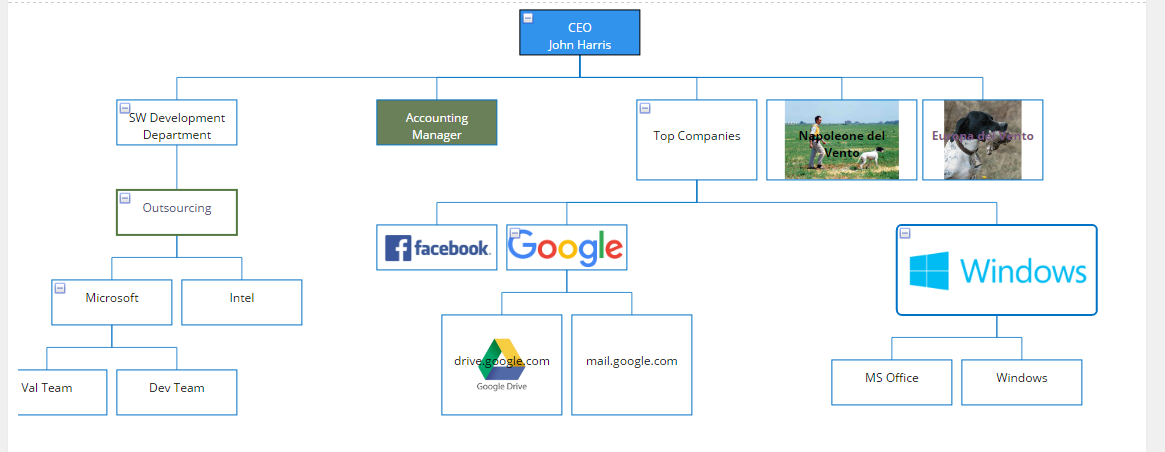 Dnn store home product details tree diagram organization sample company structure ccuart Images