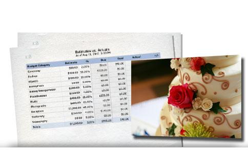 My Perfect Wedding Planner - budget planner