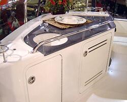 Corian Countertop Insert and Aluminum Powdercoated Framed Doors
