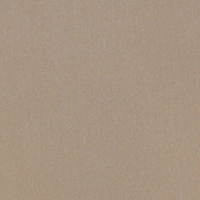 Camel - 157U533