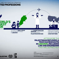 Palestinian Labour Force in Lebanon - Restricted Professions