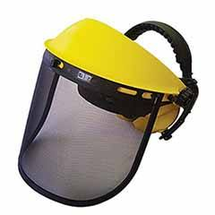 Safety Visor and Muffs