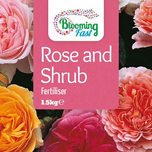 Blooming Fast Organic Rose & Shrub Feed 1.5Kg