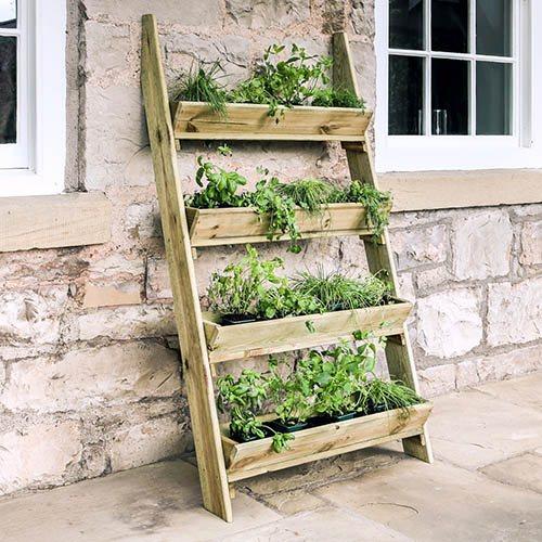 Garden Ladder Planter