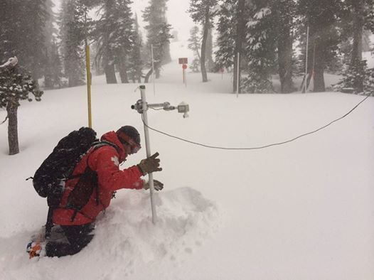 Oh man! We've been jonesing for another pow day! The Sierra finally got the goods last night! Better late than never!