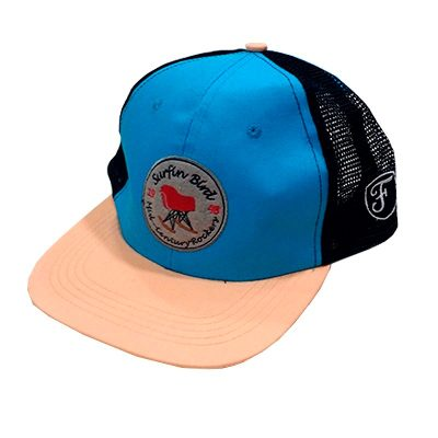 Viseras Planas - Fight For Your Right Gorra Surfing Bird