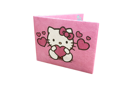 Billeteras - Wally Wallets Billetera Hello Kitty