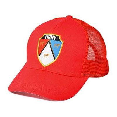 Truckers - Fight For Your Right Gorra Pappo