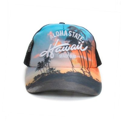 Truckers - Fight For Your Right Gorra Trucker Hawai