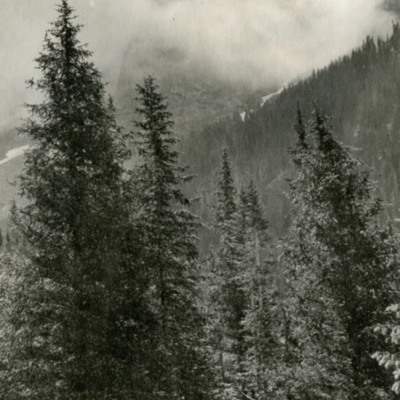 View of Needle Mountain from Chicago Basin001.jpg