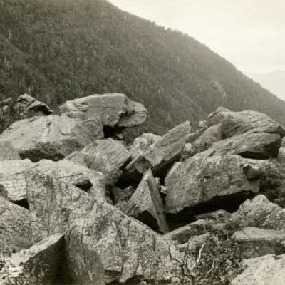 White Mountains. In King Ravine, Mt. Adams