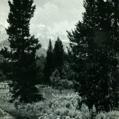 Grand Teton.