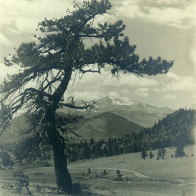 Longs Peak from Estes Park