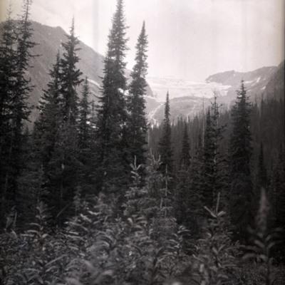 Grand Glacier? - Beaver - Overlook