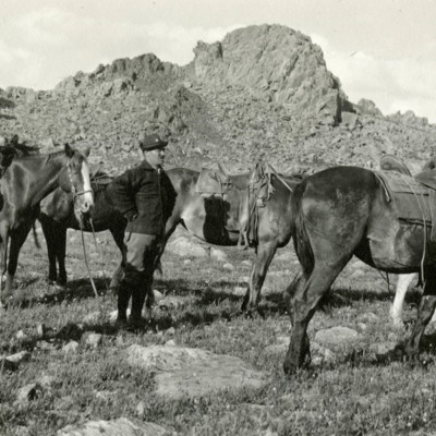 Goodbye to the Horses.jpg