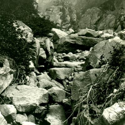 Brook bed on eastern ascent of Mt. Katadin.