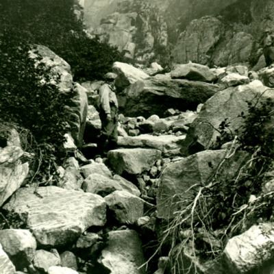 Brook bed on eastern ascent of Mt. Katadin.